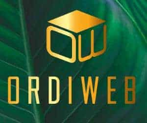 ordiweb-footer-logo